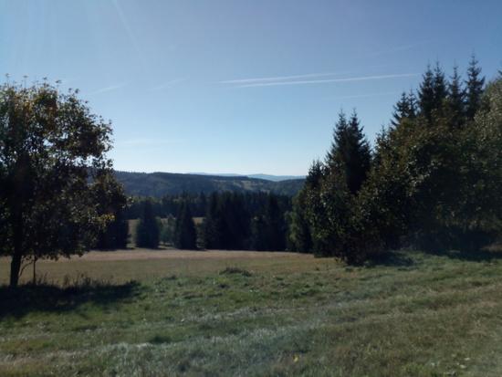 Galeria Międzygórze – Czarna Góra – Przełęcz Puchaczówka