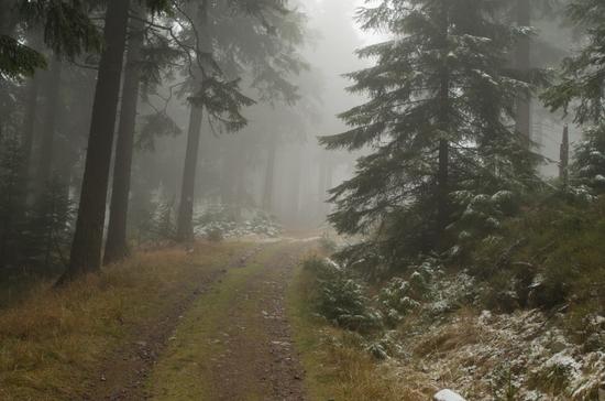 Galerie Międzygórze – Hala pod Śnieżnikiem - Śnieżnik - wejście zielony - zejście niebieski/żółty